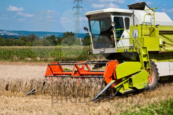 Παραγωγή- ρεκόρ καλαμποκιού στην Ευρώπη το 2015 βλέπει το USDA